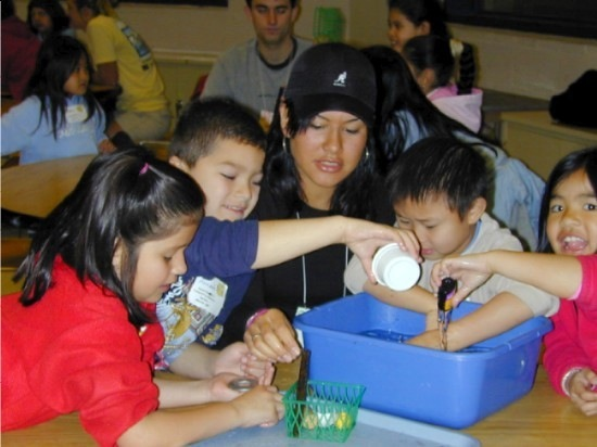 Best of COSEE Hands On Activities Now Online